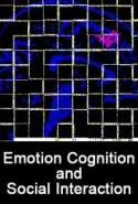 Emotion, Cognition, and Social Interaction