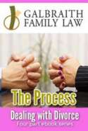 Dealing with Divorce 4 Part EBook Series: The Process (Part 1)