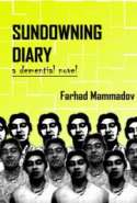Sundowning Diary- Part 2