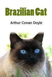 Brazilian Cat