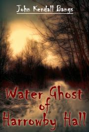Water Ghost of Harrowby Hall